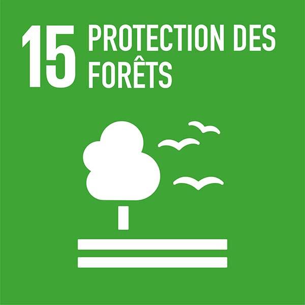 protection des forêts purification de l'air pureaero