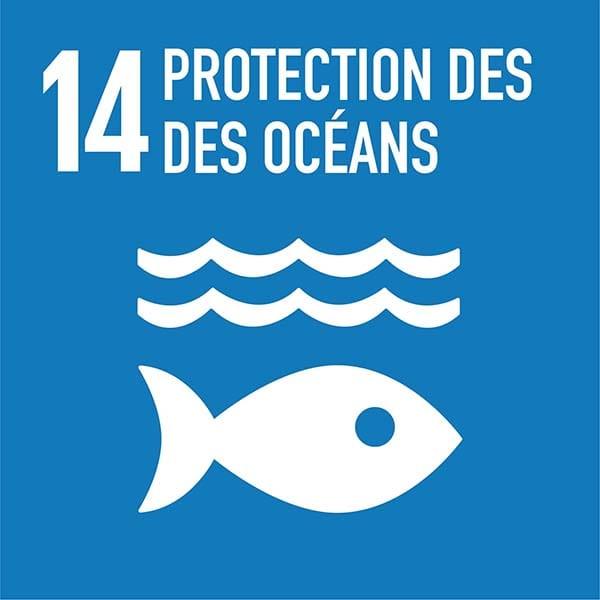 purification de l'air pureaero protection des océans