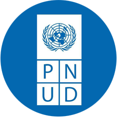 PNUD purification de l'air pureaero